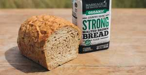 Presentation photo of Malted Brown Bread